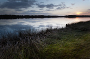 Lisa McStamp - The Marsh at Jamestown