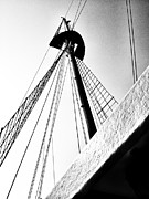 Navema Studios Framed Prints - The Mast of the Peacemaker Framed Print by Natasha Marco