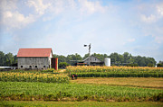 Mennonite Photos - The Mennonite Farm by Paul Mashburn
