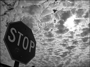 Stop Sign Photo Prints - The Message Print by Glenn McCarthy Art and Photography