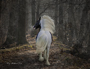 Gypsy Vanner Digital Art - The Midnight Cry by Terry Kirkland Cook
