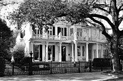 New Orleans Prints - The Montgomery-Grace House on St.Charles Ave New Orleans Print by Kathleen K Parker