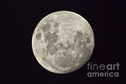 Mare Serenitatis Prints - The Moon As Seen From The Southern Print by Philip Hart