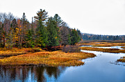 Adirondacks Photo Posters - The Moose River in the Adirondacks Poster by David Patterson