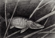 The Musky Print by Larry Green