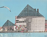 Baltimore Drawings Metal Prints - The National Aquarium Metal Print by Calvert Koerber