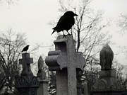 Gothicolors Donna Snyder - The Nature Of A Graveyard