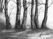 Winter Trees Drawings Metal Prints - The Nature Of Trees Metal Print by J Ferwerda