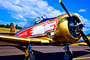 Historic Aircraft Prints - The North American T-6 Texan Airplane Print by David Patterson