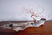 Wire Tree Sculpture Prints - The Observatory Print by Daniel Dubinsky