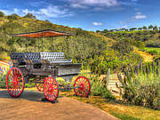 Wagon Wheels Photos - The Old Buggy by Heidi Smith