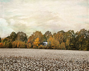 Cotton Field Posters - The Old Cotton Barn Country Landscape Poster by Jai Johnson