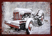 Tractor Photo Posters - The Old Ferguson Poster by Sari Sauls
