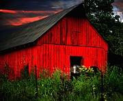 Julie Dant - The Old Frederick Barn