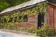 Vines Paintings - The Old General Store by Darice Machel McGuire