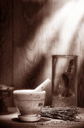 Making Photos - The Old Lavender Artisan Shop in Sepia by Olivier Le Queinec