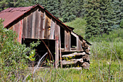 Cabin Wall Posters - The Old Mine Shack In Telluride Colorado Poster by Janice Rae Pariza