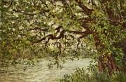 Home Pastels - The Old River Tree by Barbara Smeaton