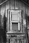 Wayne Stabnaw - The Old Shed Window