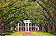 Oak Alley Plantation Photo Prints - The Old South Print by Steve Harrington