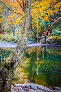 Fall Foliage Photos - The Old Swimming Hole by Edward Fielding