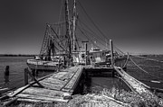 Sepia White Nature Landscapes Prints - The Old Wharf in Brunswick Print by Debra and Dave Vanderlaan