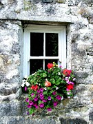 Joe Cashin - The old window