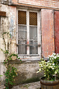 Curtains Photo Framed Prints - The Old Window with the Cats on the Curtains Framed Print by Olivier Le Queinec