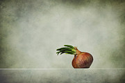 Still Life Digital Art Metal Prints - The Onions Metal Print by Diana Kraleva