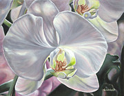 Grazyna Wolski - The Orchid
