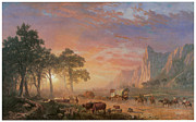 Wagon Train Framed Prints - The Oregon Trail Framed Print by Albert Bierstadt