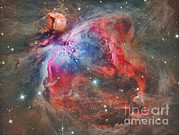 Deep Reflection Posters - The Orion Nebula Poster by Reinhold Wittich