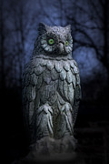 Sculpture Animal Posters - The Owl Poster by Tom Mc Nemar