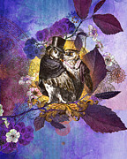 Tag Photo Framed Prints - The Owlsleys Framed Print by Aimee Stewart