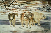 Kristina Delossantos - The Pack