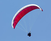 Bob Stevens - The Paraglider