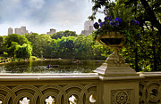 People Rowing Framed Prints - The Park on a Sunday Afternoon Framed Print by Madeline Ellis