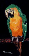 Talking Painting Prints - The Parrot Print by Joyce Gebauer