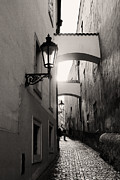 Gas Lamp Photos - The Path by Ivy Ho