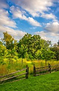Split Rail Fence Photo Prints - The Path Print by Steve Harrington