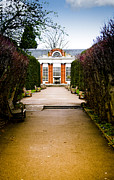 Shrubbery Framed Prints - The Path to the Orangery Framed Print by Christi Kraft