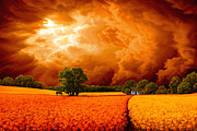 Sun Breaking Through Clouds Painting Posters - The Peaceful Meadow Poster by Dominic Sata