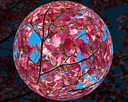 William Havle Art - The Peach Tree Sphere by William Havle