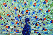 Artist Christine Krainock Framed Prints - The Peacock Framed Print by Christine Krainock