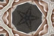 Stefan Kuhn - The Pentagram