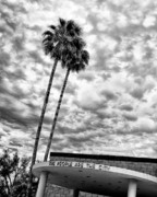 Black Top Acrylic Prints - THE PEOPLE ARE THE CITY Palm Springs City Hall Acrylic Print by William Dey