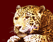 Jaguars Framed Prints - The Perfect Cat Framed Print by DiDi Higginbotham