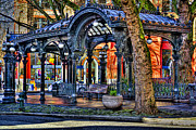 Storefront  Art - The Pergola II by David Patterson