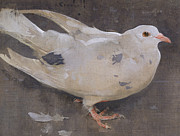 The Pigeon Print by Joseph Crawhall