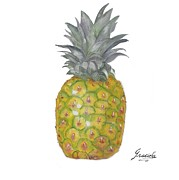 Graciela Castro - The Pineapple on white
